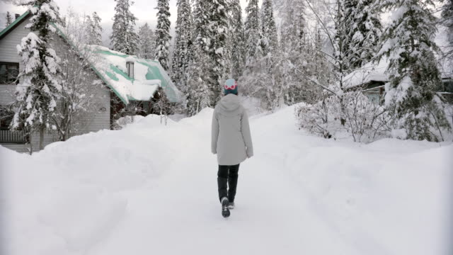 asian woman hiking at emerald lake in winter - chinaface stock videos & royalty-free footage