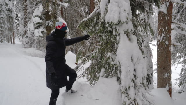 asian woman hiking in snowy forest - chinaface stock videos & royalty-free footage