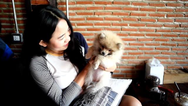 犬を抱いているアジアの女性 - ペット点の映像素材/bロール