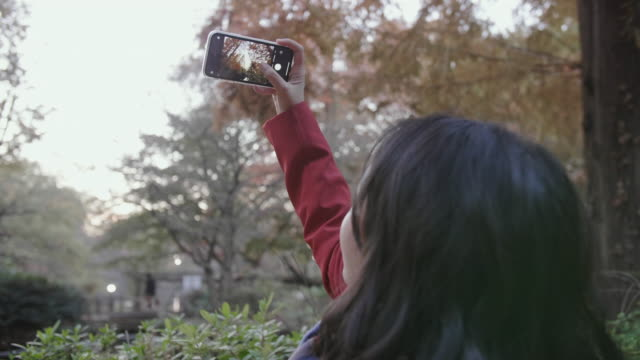 vidéos et rushes de femme asiatique dans la chemise rouge prenant la photographie de feuille d'automne avec le smartphone au stationnement public dans la ville de tokyo. - photo messaging