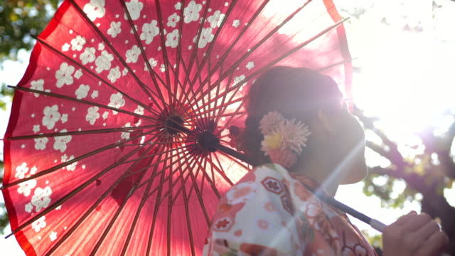 asian woman in traditional kimono - japanese ethnicity stock videos & royalty-free footage
