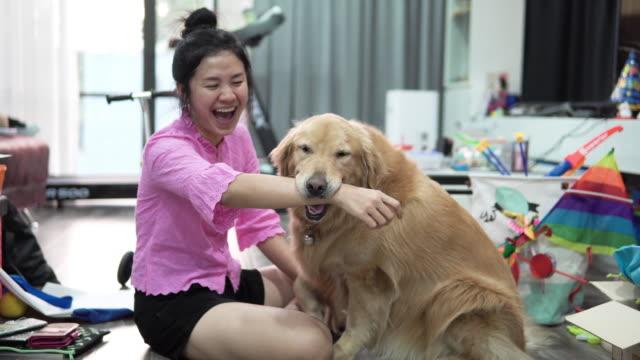 リビングルームでゴールデンレトリバーと遊ぶアジアの女性。 - 片付いた部屋点の映像素材/bロール
