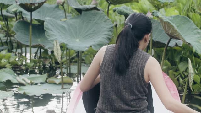 vídeos y material grabado en eventos de stock de mujer asiática remando un pequeño bote en un estanque de loto, recogiendo pétalos de loto, pétalo de loto plegable. concepto de relajación en el entorno natural. - posa del loto