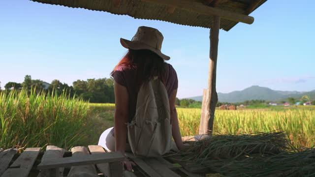 vidéos et rushes de femme asiatique assise vieux balcon d'une petite cabane sur la crête de rizière, oreille de riz sous le coucher du soleil dans une scène d'agriculture non urbaine et chaîne de montagnes, le nord de la thaïlande avec se sentir excité, émotion pos - non urban scene