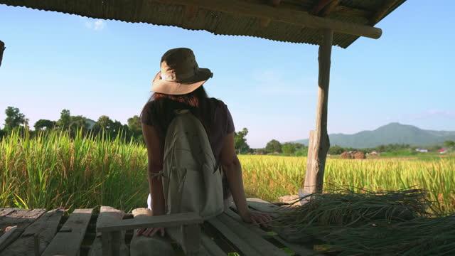 vidéos et rushes de femme asiatique assise vieux balcon d'une petite hutte, lever le bras, sentir la fraîcheur sur la crête du riz paddy, oreille de riz sous le coucher du soleil dans une scène d'agriculture non urbaine et de la chaîne de montagnes, le nord de la tha� - non urban scene