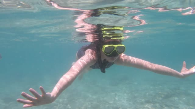 asian woman snorkeling on sea - red sea stock videos & royalty-free footage
