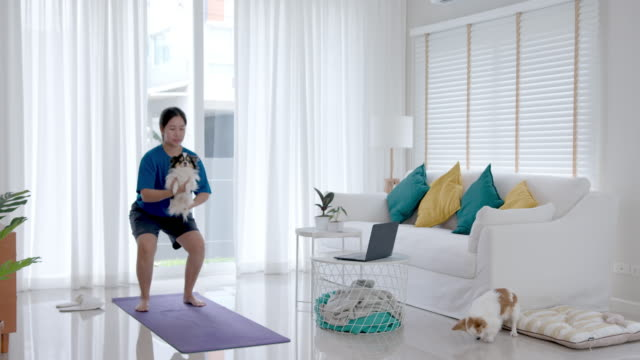 asian woman squat exercise pose and holding little puppy dog for non traditional weights at living room in home. - overweight dog stock videos & royalty-free footage