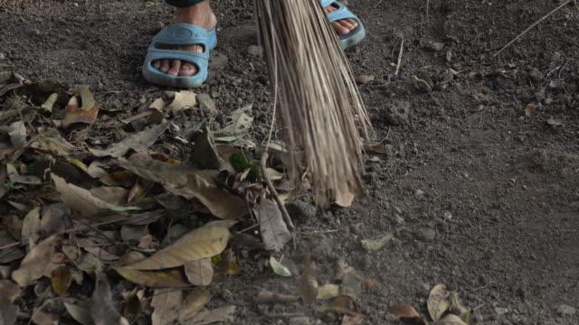 vídeos y material grabado en eventos de stock de mujer asiática barriendo hojas secas en el piso - barrer