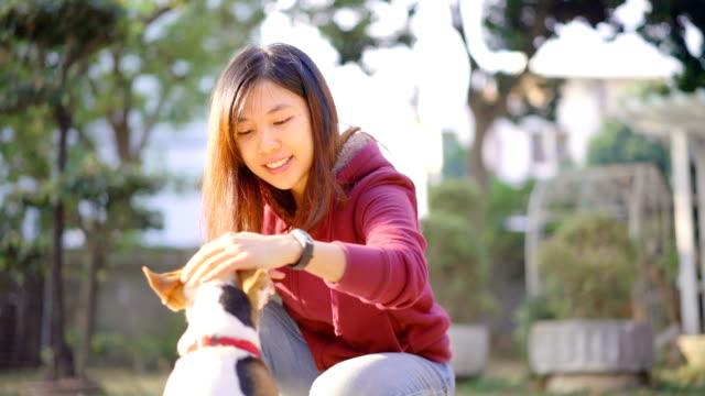 vidéos et rushes de femme asiatique 4k son jack russell terrier chien de formation - femme soumise