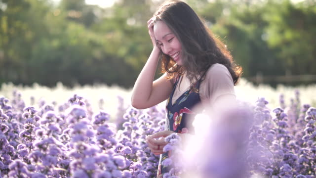 asian woman walking in the field of flower - herb stock videos & royalty-free footage