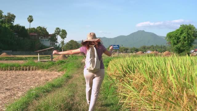 vidéos et rushes de femme asiatique marchant, courant pour sauter sur la crête du riz paddy entre l'oreille de riz et le riz récolté sous le coucher du soleil dans une scène agricole non urbaine, le nord de la thaïlande avec un sentiment excité, émotion positive - non urban scene