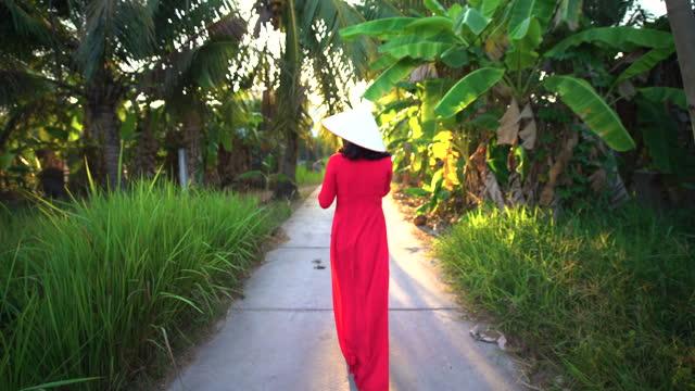 asian woman walking through plantation in sunlight vietnam - footpath stock videos & royalty-free footage