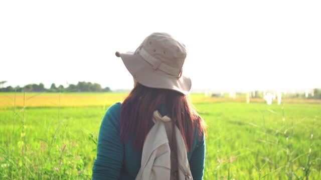 vidéos et rushes de femme asiatique marchant pour voir la vue sur le rizière, l'oreille de riz et de riz vert sous le coucher du soleil dans une scène agricole non urbaine, le nord de la thaïlande - non urban scene
