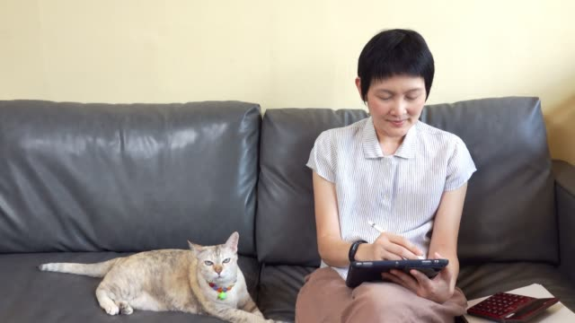 asian woman work from home with computer tablet together with cat, online communication for shopping and social media - ledger book stock videos & royalty-free footage