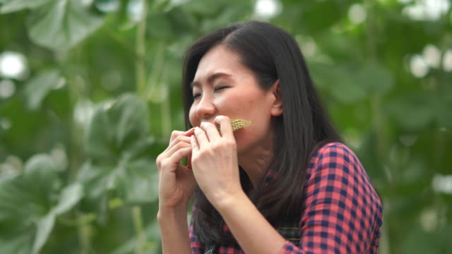stockvideo's en b-roll-footage met aziatische jonge vrouwenboer testte meloengewasrassen voor onderzoek en ontwikkeling, ggo voedsel, biofoodconcept, geniet van het eten - alleen één tienermeisje