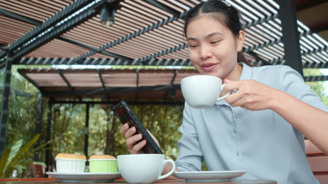 asian young woman sitting on the internet on a smartphone in a coffee shop that has a green garden setting. - mug stock videos & royalty-free footage