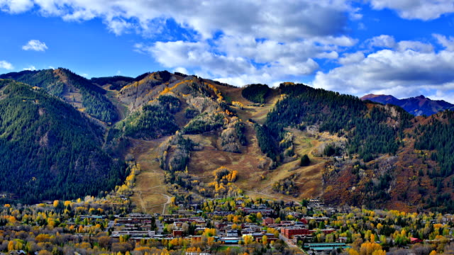 aspen, co - aspen tree stock videos & royalty-free footage