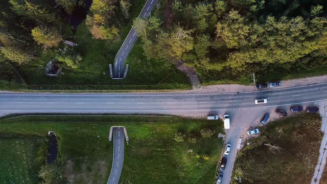 vídeos de stock e filmes b-roll de asphalt road in the forest. aerial video - pinhal