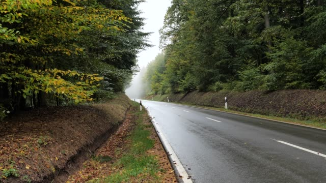 asphalt road in the forest after rain - empty road stock videos & royalty-free footage