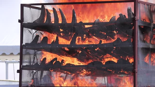 IND: Confiscated Rhinoceros Horns Burnt In India