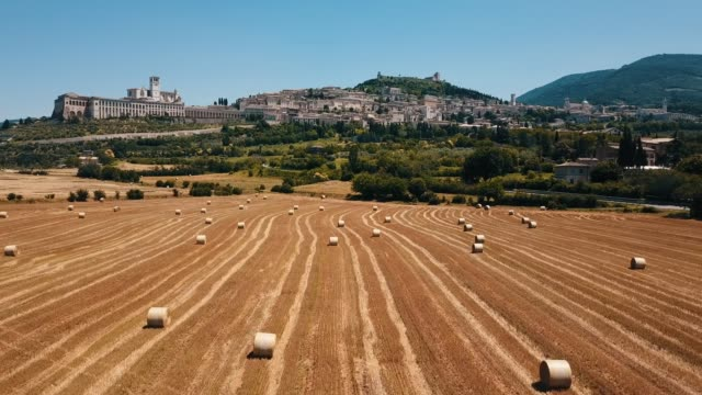 assisi, umbria, italy. meadow field and basilica - assisi stock videos and b-roll footage