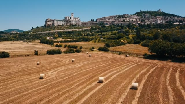 assisi, umbria, italy. meadow field and basilica - ウンブリア州点の映像素材/bロール