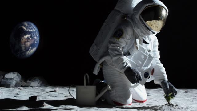 vídeos de stock e filmes b-roll de ms slo mo astronaut gardening on the moon / berlin, germany - astronauta