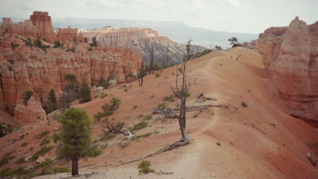 Bij Bryce Canyon National Park, Peek een boo trail