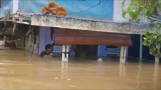 """at least 19 were killed in indonesia's capital and nearby towns when heavy rains caused flash floods, the authorities said on thursday. """"it has been... - jakarta stock videos & royalty-free footage"""
