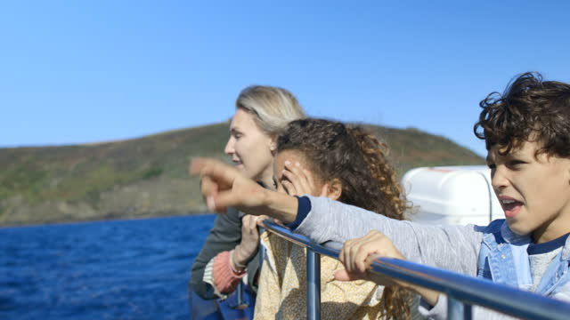 at sea with mum - travel destinations stock videos & royalty-free footage