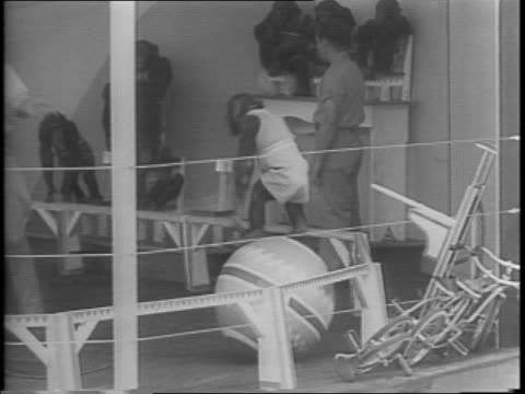at st louis zoo crowd of visitors watch chimpanzee circus / grand feature act the monkey roman rides on horses in circle on stage / chimpanzees jump... - anno 1943 video stock e b–roll