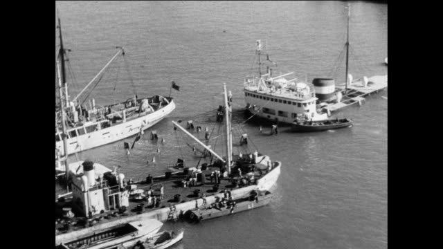 At the harbor and entrance to the canal crews work on salvaging shipwrecks / Suez Canal Egypt / Suez Crisis aftermath