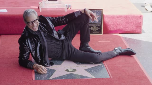 clean at the jeff goldblum honored with a star on the hollywood walk of fame on june 14 2018 in hollywood california - event capsule stock videos & royalty-free footage