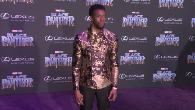 CLEAN at the Marvel Studios' Black Panther World Premiere at Dolby Theatre on January 29 2018 in Hollywood California