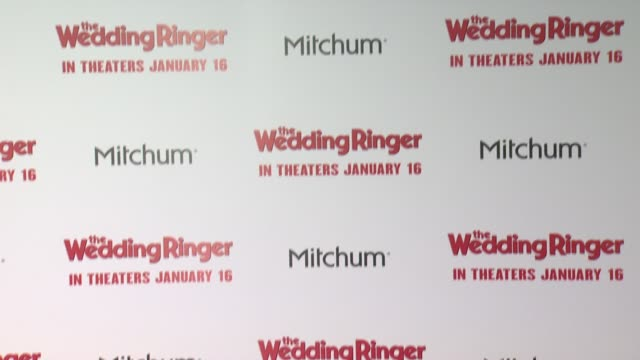 ATMOSPHERE at The Wedding Ringer Los Angeles Premiere at TCL Chinese Theatre on January 06 2015 in Hollywood California