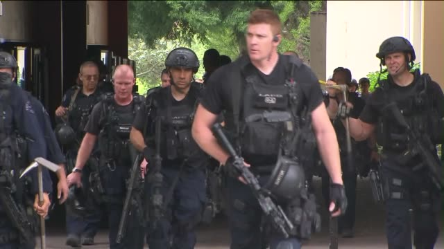 at ucla campus after shooting which was deemed a murder-suicide. - los angeles police department stock videos & royalty-free footage