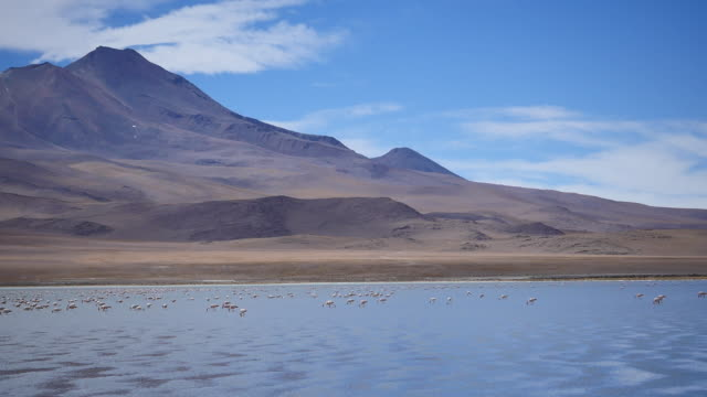 Atacama dessert with blue sky