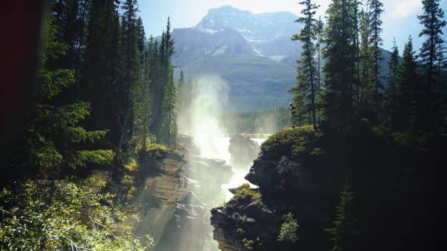 athabasca falls in canada - athabasca falls stock videos and b-roll footage