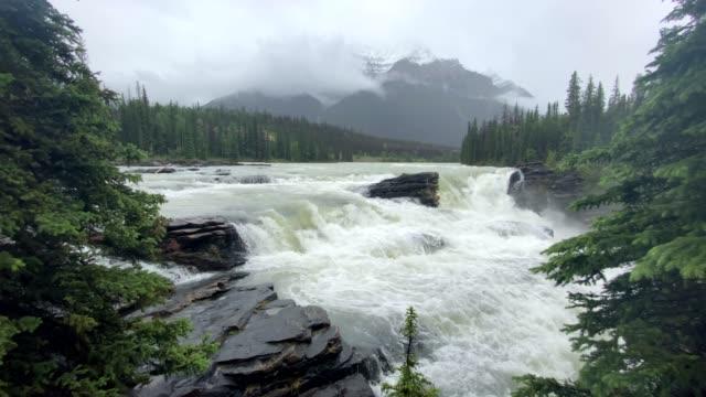 athabasca falls in jasper national park, alberta, canada - athabasca falls stock videos & royalty-free footage