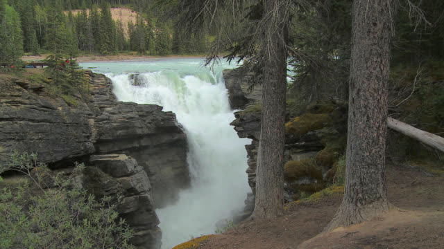 ms athabasca falls, jasper national park, alberta, canada - athabasca falls stock videos and b-roll footage