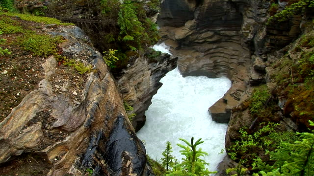 athabasca falls, jasper national park, alberta, canada - athabasca falls stock videos and b-roll footage