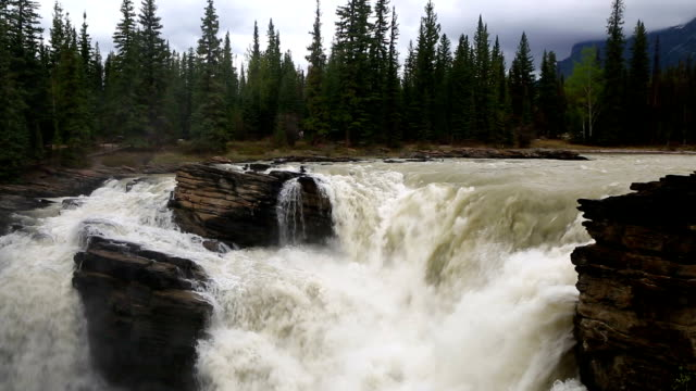 athabasca falls jasper national park - athabasca falls stock videos and b-roll footage