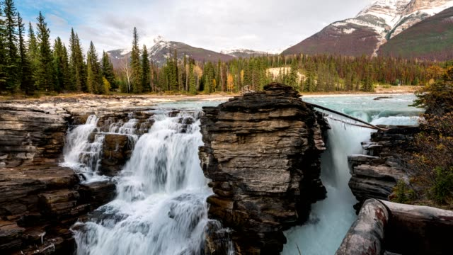 athabasca falls on the upper athabasca river with rocky mountains in autumn forest at icefields parkway, jasper national park, canada - athabasca falls stock videos & royalty-free footage