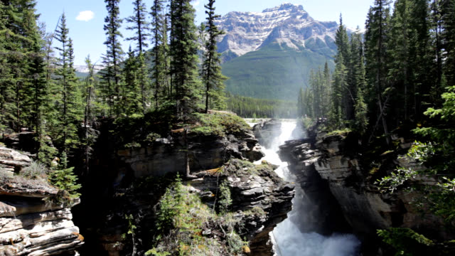 athabasca falls - athabasca falls stock videos and b-roll footage