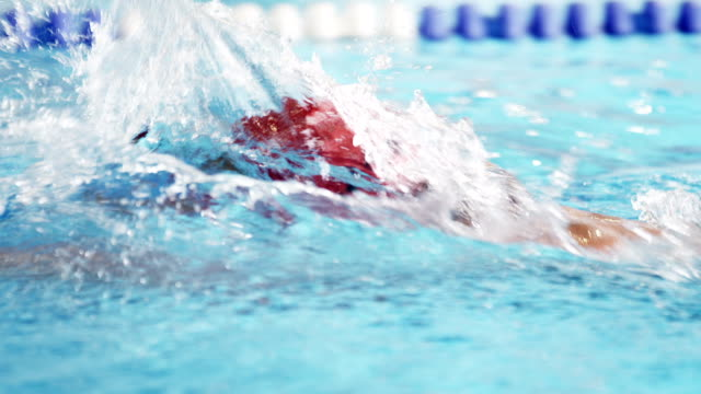 athlete in water - freestyle swimming stock videos and b-roll footage