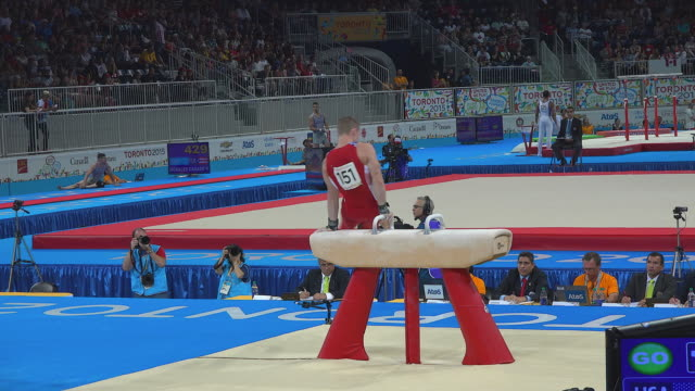 Athlete of the Team Canada performing in the pommel horse The 2015 Toronto Pan American Games were a multisports event which became the largest...
