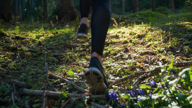 Athlete running in forest