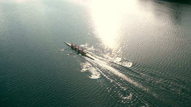 aerial athletes in a coxless four gliding across a lake in sunshine - rowing stock videos & royalty-free footage