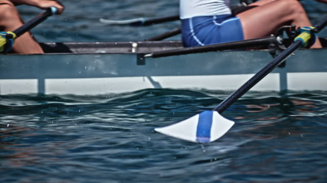 slo mo athletes moving oars through the water in sunshine - scull stock videos & royalty-free footage