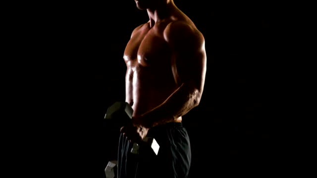 athletic male lifting weights - arm curl stock videos and b-roll footage